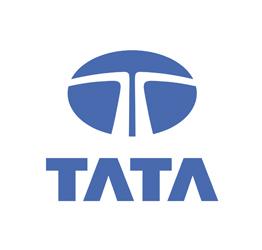 Tata Cam Kriko Parçaları