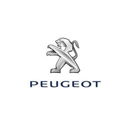 Peugeot Kapı Kilitleme Parçaları