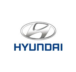 Hyundai Otomatik Cam Kriko Parçaları