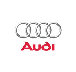 Audi Otomatik Cam Kriko Parçaları